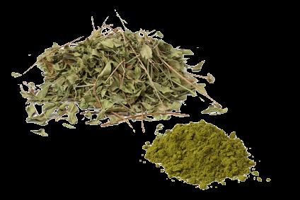 produits coloration végétale